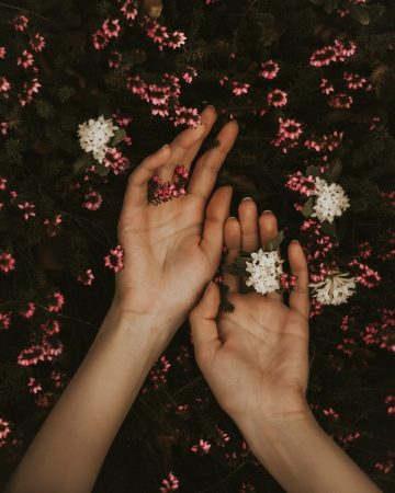 Milan Popovic - hand with flowers